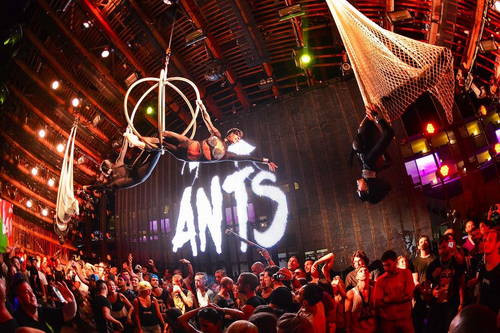 ANTS is ready for the Ibiza summer season!