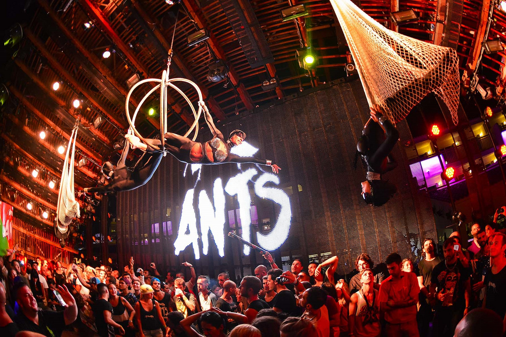 ANTS is visiting Zurich's Love Mobile Street Parade