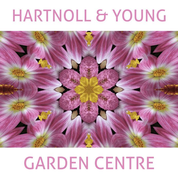 Hartnoll & Young deliver 'Garden Centre' !